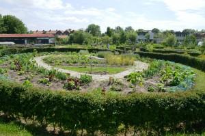 150613 Kerngroep in Middelburg, Lynn schooltuin